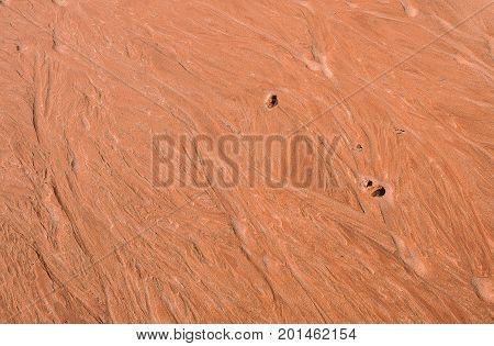 The Wave, Amazing Sandstone In Arizona