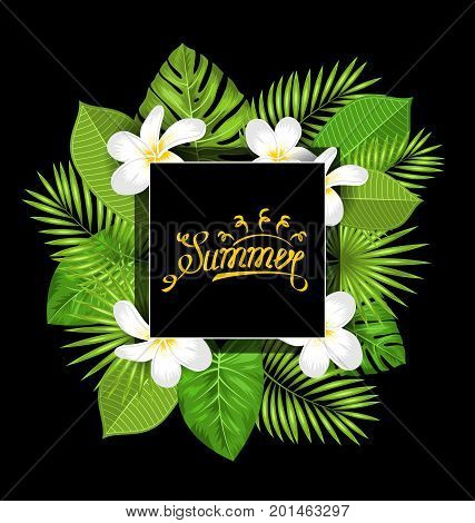 Summer Card with Frangipani Flowers and Green Tropical Leaves - Illustration Vector