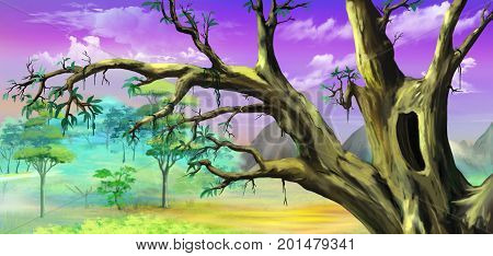 African Tree with Big Hollow against Purple Sky in a African national park. Digital Painting Background Illustration in cartoon style character.