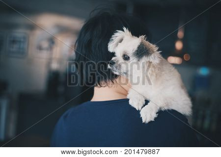 Asian Women And Dog In Coffee Shop Cafe