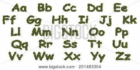 3d rendering ultra high quality image. 16.000 px horizontally. Alphabet of forest collection in an aerial view. On top view tree forest high detail font. Decorative symbols isolated on white background.