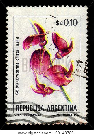 ARGENTINA - CIRCA 1983: a stamp printed in the Argentina shows erythrina crista-galli, often known as the cockspur coral tree, series, circa 1983