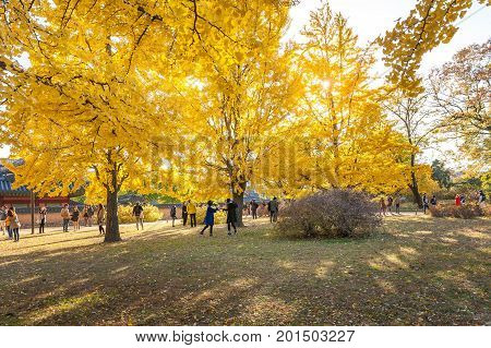 Seoul, Korea - November 1, 2014: Autumn Leaves At Gyeongbokgung Palace, November 1, 2014 In Seoul, S