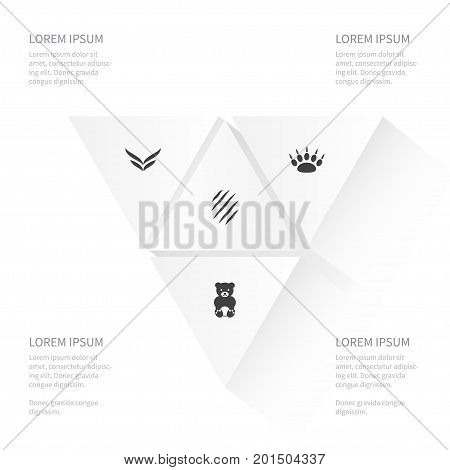 Icon Zoology Set Of Paw, Fly, Bruin And Other Vector Objects