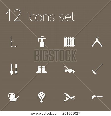 Collection Of Garden, Hacksaw, Cutter And Other Elements.  Set Of 12 Household Icons Set.