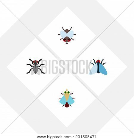 Flat Icon Fly Set Of Gnat, Tiny, Housefly And Other Vector Objects