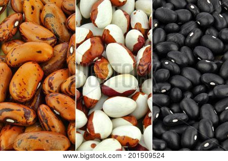 Beans - collection of brown, pointed pinto and black beans
