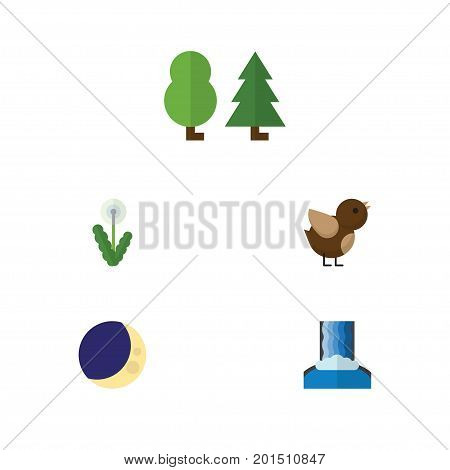 Flat Icon Ecology Set Of Half Moon, Cascade, Floral And Other Vector Objects