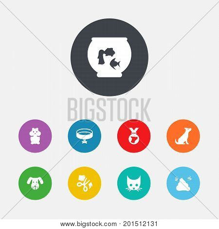 Collection Of Cat, Fishbowl, Head And Other Elements.  Set Of 9 Animals Icons Set.
