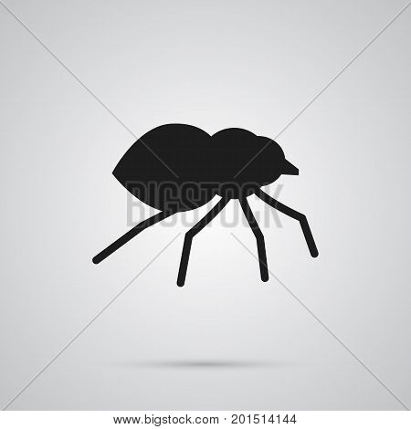 Vector Arachnid Element In Trendy Style.  Isolated Spider Icon Symbol On Clean Background.