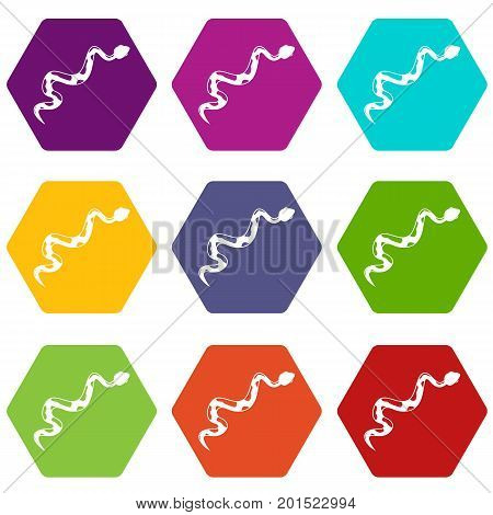 Creeping snake icon set many color hexahedron isolated on white vector illustration