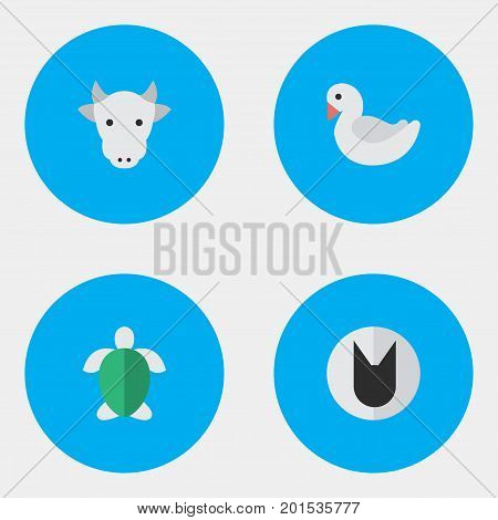Elements Turtle, Swan, Kine And Other Synonyms Goose, Milk And Cute.  Vector Illustration Set Of Simple Wild Icons.