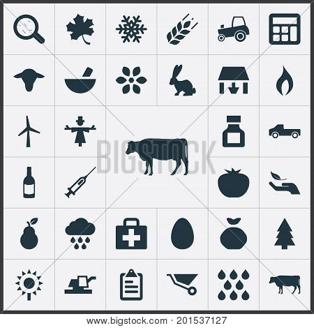 Elements Alcohol Beverage, Medicament, Turbine And Other Synonyms Storage, Scarecrow And Frond.  Vector Illustration Set Of Simple Harvest Icons.