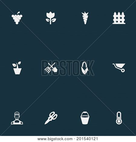 Elements Wheelbarrow, Fruit, Flowerpot And Other Synonyms Flowerpot, Grape And Gardening.  Vector Illustration Set Of Simple Horticulture Icons.