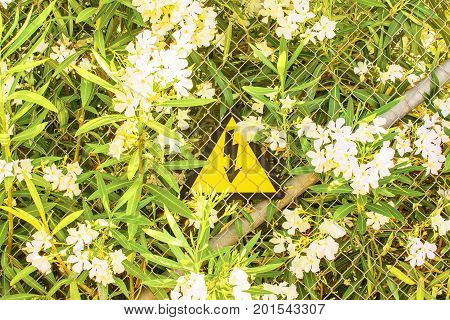 High voltage warning sign in bushes with white flowers