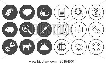 Veterinary, pets icons. Dog paws, syringe and magnifier signs. Pills, heart and feces symbols. Document, Globe and Clock line signs. Lamp, Magnifier and Paper clip icons. Vector