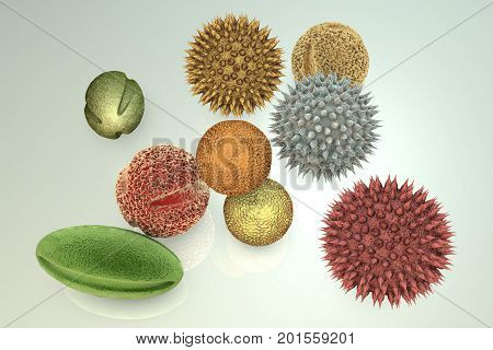 Pollen grains from different plants, 3D illustration. They are factors causing hay fever and allergic rhinitis