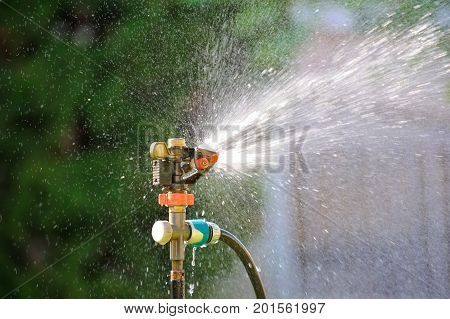 Lawn sprinkler spaying water over green grass. Irrigation system. backlight