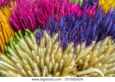 colorful grass flower background, thai hand made