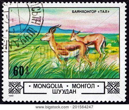 MONGOLIA - CIRCA 1982: a stamp printed in Mongolia shows Chamois Bajanhongor Steppe circa 1982