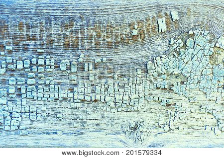 Paint texture background. Peeling paint texture of light blue color on the wooden texture surface. Background of peeling paint texture on the old weahered wood. Closeup of paint texture peeling off. Details of peeling paint texture background