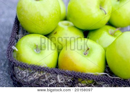 fresh picked green apples