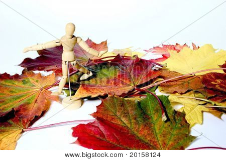 leaves and a stickman
