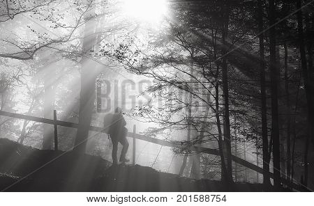 Black and white image with the silhouette of a man hiking through woods on trails illuminated by sun rays. Photo with a strong contrast between shadow and light.