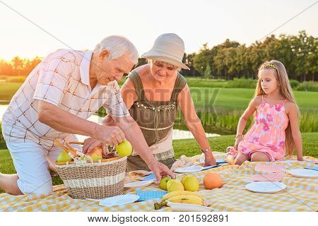 Seniors with grandchild having picnic. People and fruit basket. Eating habits for longevity.