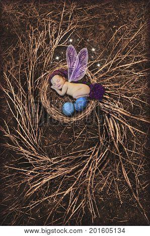 Baby Fairy with purple wings sleeping in bird nest
