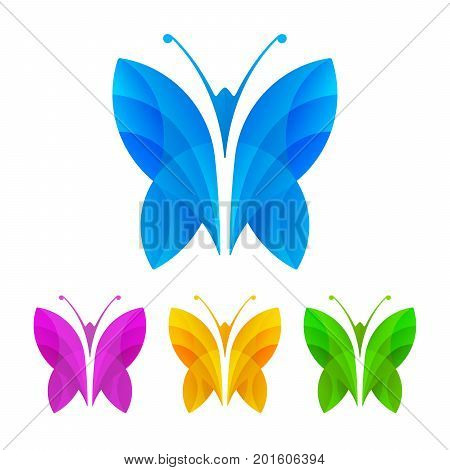 Colorful butterflies on white background. Decorative butterfly design. Vector illustration.