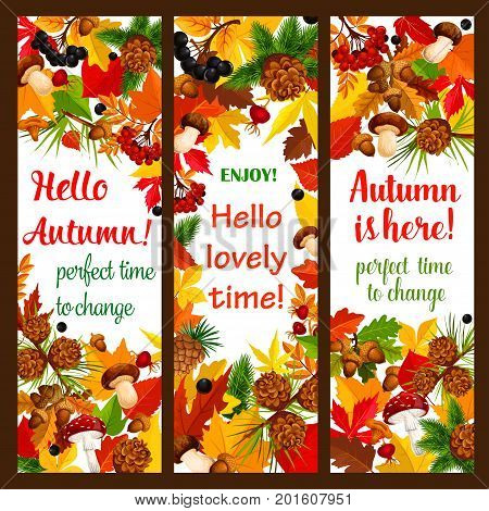 Autumn leaf banner set with fall season nature frame template. Orange and yellow foliage, forest mushroom, rowan and briar berry, maple and oak leaves, acorn and pine cone for autumn holiday design