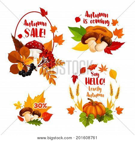 Autumn Sale, Hello Fall icons for seasonal shopping discount promo or greeting card design. Vector 30 percent price off wreath of pumpkin, maple leaf or oak acorn and rowan berry or mushroom harvest