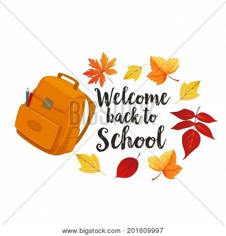 Welcome Back to School poster of school bag and autumn season leaf foliage of maple, rowan or oak and chestnut. Vector design of school backpack or rucksack with education stationery