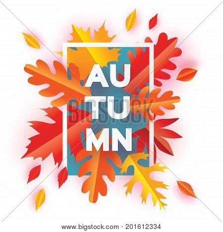 Beautiful Autumn Paper Cut Leaves. Hello Autumn. September flyer template. Rectangle frame. Space for text. Origami Foliage. Maple, oak. Fall poster background. Vector illustration.