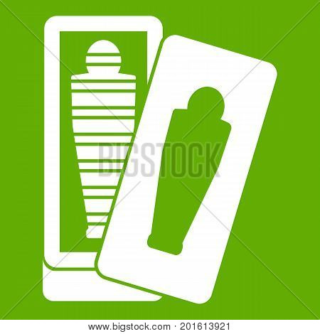 Mummy in sarcophagus icon white isolated on green background. Vector illustration poster