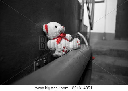 thrown white Teddy bear in the slum sits on the pipes