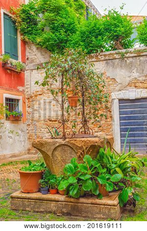 Views On Courtyard Patio In The Most Beautiful City In The Word - Venice, Narrow Streets, House, Pal