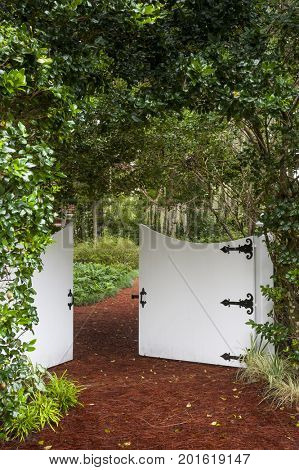 Secret garden entrance gate trail path covered with lush green leaves plants foliage private park oasis vertical