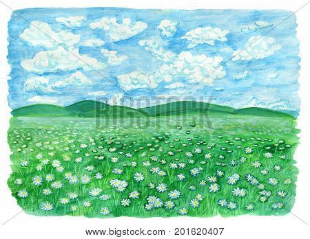 The field or grassland or pasture with daisy flowers and cloudy sky. Vintage rural background with summer landscape, watercolor illustration with design graphic elements