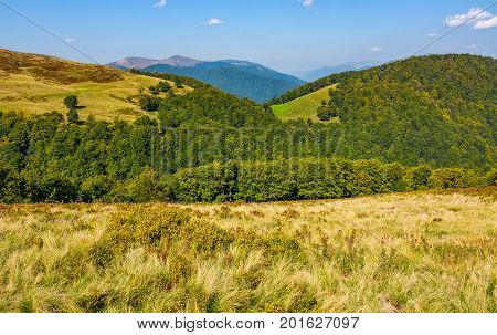 Grassy Meadow On A Hillside In Autumn