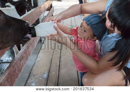 Asian beautiful mother is take care your cute new born baby feeding milk for baby cow in the farm Activities family to enhance the learning experience of children.