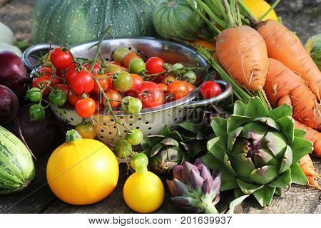 Fresh raw vegetable ingredients for healthy cooking or salad making , copy space. Diet or vegetarian food concept .