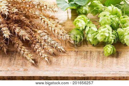 Green Hops And Wheat Ears