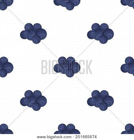 Blueberry berries, sweet fruit. Fruit single icon in cartoon style vector symbol stock illustration .