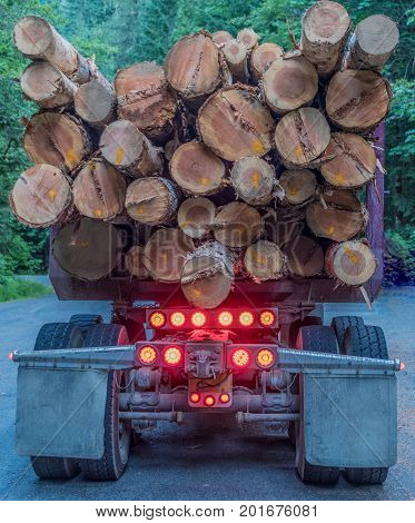Back of Logging Truck Heading Out from the Forest