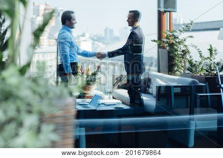 Professional agreement. Nice professional male entrepreneurs looking at each other and shaking hands while reaching an agreement