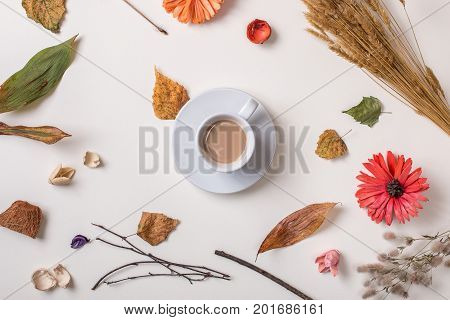 Autumn creative set: fallen leaves dry petals dried flowers and dry plants simple rustic branches and wheat bunch cup of coffee in center. White background. Top view. Flat lay.