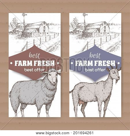 Set of two farm shop labels with farmhouse, barn, sheep and goat on white. Includes hand drawn elements.