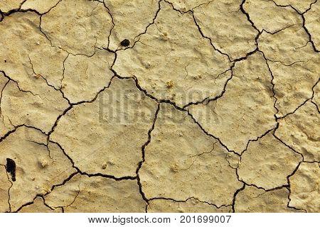 Texture dry dirt close up